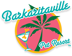 """A green palm tree over a pink circle with yellow outline that reads, """"Barkaritaville: Pet Resort"""" on it, with a small cocktail glass that has a bone sticking out of it off to the side."""
