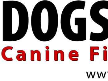 A red, white, and black Dog Safe: Canine First Aid logo.