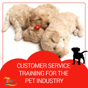 "Three sleeping puppies cuddled together on a white floor. Below that, the image reads, ""Customer Service Training for the Pet Industry."""
