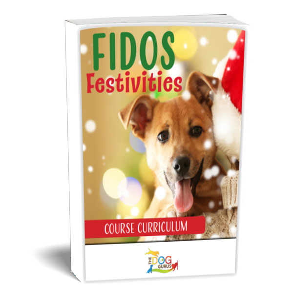 fidos holiday festivities curriculum