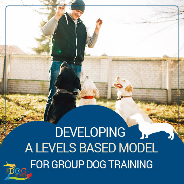 group dog training guide