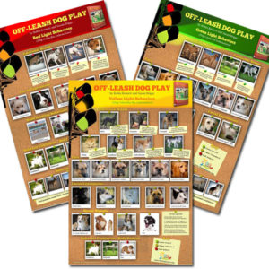 Three off-leash dog play posters depicting good, bad, and in-between behaviors.