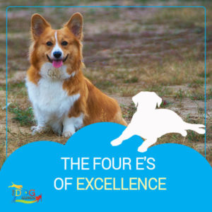 """A corgi smiling at the camera with """"The Four E's of Excellence"""" written below the image."""