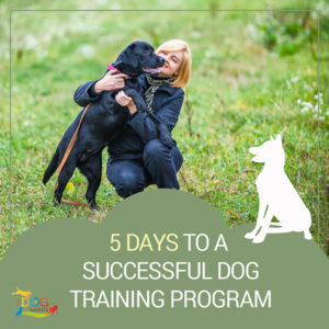 "A black dog being held up slightly by its crouching owner in a grassy area. The written content below the image reads, ""5 Days to a Successful Dog Training Program."""